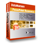 DataNumen PowerPoint Recovery Coupon Codes
